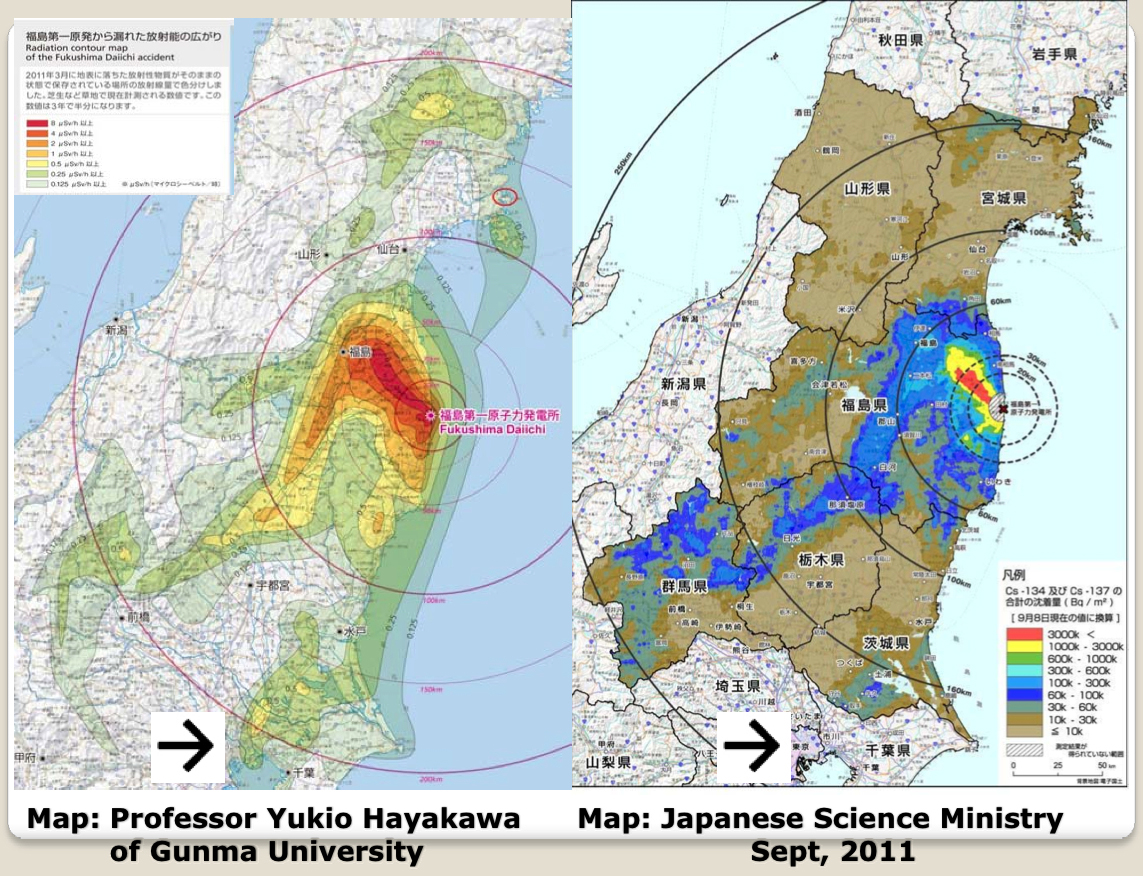 Steven Starr: The Implications of The Massive Contamination of Japan ...